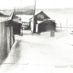 Leeland Fish Town