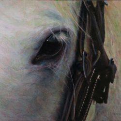 "Maybelline | 12"" X 16"" | Oil on Birch"